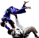 Brazilian Jiu Jitsu  von 20.00-21.30 Uhr